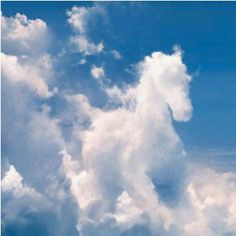 horse picture in a cloud | Dare to see the unseen. It doesn't matter that others couldn't see ...