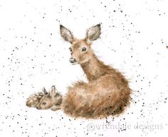 """Art - Deer and Fawn - """"Darling"""" - The Country Set Collection by Wrendale Designs - Hannah Dale Art And Illustration, Watercolor Animals, Watercolor Paintings, Watercolours, Animal Drawings, Art Drawings, Wrendale Designs, Photo Images, Wildlife Art"""