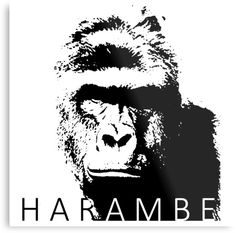 A tribute to Harambe