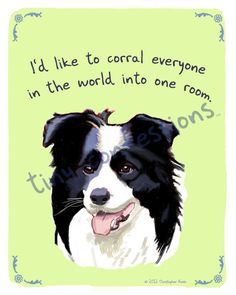 Tiny Confessions Border Collie by Christopher Rozzi Border Collie Pictures, Border Collies, Dog Love, Puppy Love, Animal Magic, Rough Collie, Animal Party, Party Animals, Real Friends