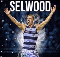 Champion Australian Football League, Cat Character, Great Team, Stephen Curry, Interesting Facts, Fun Facts, Legends, Champion, Tank Man