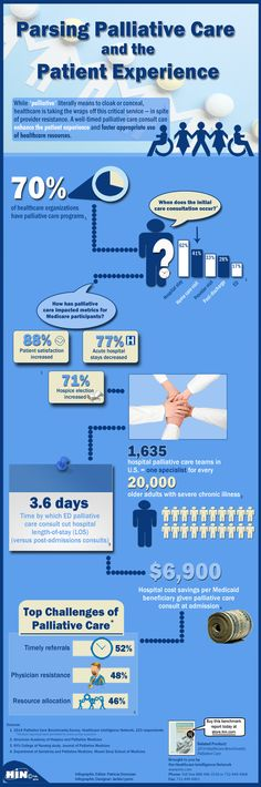 Parsing Palliative Care and the Patient Experience Infographic