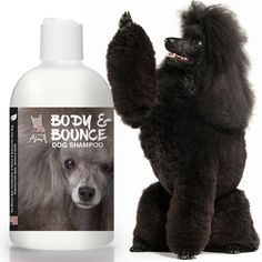 BODY & BOUNCE DOG SHAMPOO