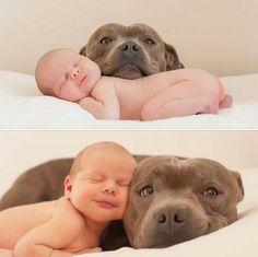 Cute baby photo with a dog.  #babysmiling #babydogphoto #cuteinfantphoto