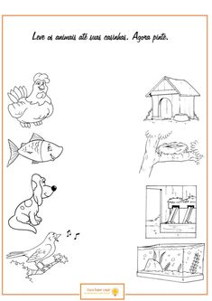 Crafts,Actvities and Worksheets for Preschool,Toddler and Kindergarten.Lots of worksheets and coloring pages. Animal Worksheets, Science Worksheets, Worksheets For Kids, Matching Worksheets, Toddler Activities, Learning Activities, Kids Learning, Kindergarten Anchor Charts, Kindergarten Worksheets