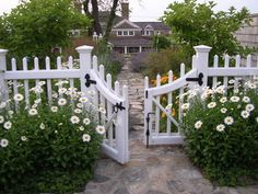 Neighborly Front Yard....Set the fence back. Placing a low fence or wall back a few feet from the edge of the sidewalk allows room for planting, and plants provide visual interest for pedestrians....... cheerful daisies