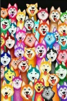 A massive collection of gifts, clothes, mugs, jewelry, everything Husky! All in the same place at the lowest prices. If you are a siberian husky lover check it out. #siberianhusky #siberianhuskygifts. *aff*