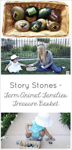 Montessori-inspired activity of story stones - farm animal families treasure basket for toddlers. The post includes a short YouTube video plus a review of The Garden Classroom book by Cathy James.