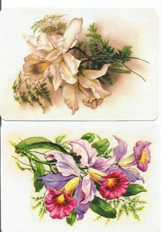 A61 FLOWERS swap playing cards MINT COND ORCHIDS
