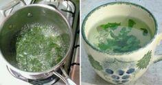 Uma planta milagrosa para as mulheres: equilibra os hormônios e emagrece 1kg por…