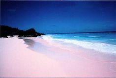 Bermuda...pink sand beaches