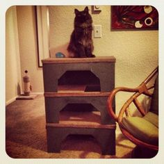 DIY Cat Condo ~ 3 stacked display boxes from Costco, spray paint, scrap carpet and strong glue! Cheap & customizable!