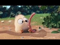 There is/ There are.  Angry Bird Short