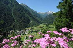 Val di Pejo -  Parco Nazionale dello Stelvio - Trentino http://www.visitvaldipejo.it/index.cfm/utilities/photogallery/