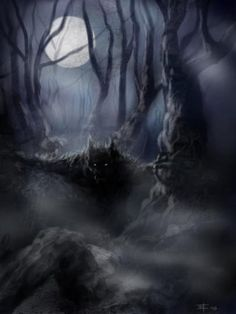 @aimee2004 What do you think of this guy. I can't even tell what he is--maybe a wolf. scary creatures in the woods | He S In The Woods