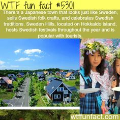 WTF fun facts #5301: There's a Japanese town that looks just like Sweden, sells Swedish folk crafts, and celebrates Swedish traditions. Sweden Hills, located on Hokkaido Island, hosts Swedish festivals throughout the year and is popular with tourists. WTF! funny, interesting & weird facts