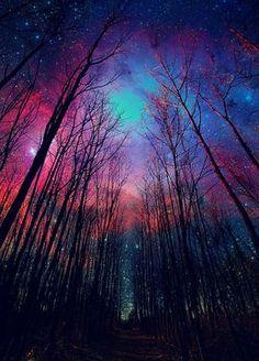 Hermosa madre naturaleza, que en tu belleza guardas majestuosas paletas de colores <3 <3