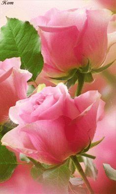 FLOWER LOVE ~~~ .