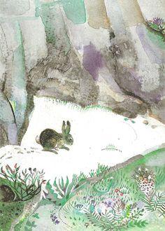 Illustration by Sita Jucker