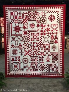 Just Takes 2 Barbara Black's Quilt