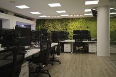 Indoor vertical garden in office