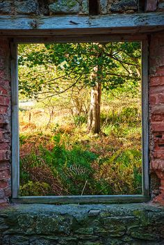 #Window                                                                                                                                                                                 Mais