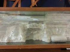 Image result for aquarium 3d background diy Fake Rock Wall, Aquarium Backgrounds, Diy Aquarium, Background Diy, Image, Ideas