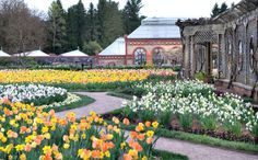 Each spring, see #Biltmore in full bloom. Admire the works of landscape architect, Frederick Law Olmsted and stroll the 2.5-mile path of manicured gardens. Once you've taken it all in, spend the rest of your day at the Biltmore biking, horseback riding, hiking, shopping and dining. With 10 dining options, you will find something to satisfy every palette.