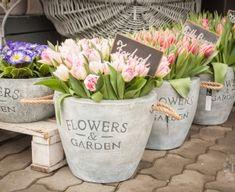 Planter Pots, Pastel, Spring, Garden, Flowers, Cake, Garten, Lawn And Garden, Gardens