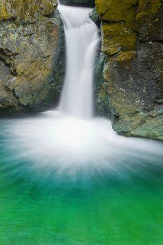 Spinach Sound - Mount Rainier National Park,  Washington