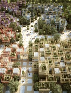 "Penda designs modular wooden ""village"" for Beijing Horticultural Expo"