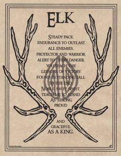 """This Elk prayer poster is a powerful display of the spirit of a solid animal who stands tall with power and grace. Great as a display, but also a great addition to a Book of Shadows. Size: 8 1/2"""" x 11"""