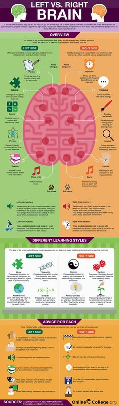 Psychology infographic and charts Left Brain vs. Right Brain (Infographic) Infographic Description Left Brain vs. Right Brain -- Have you ever wondered Left Vs Right Brain, Coaching, Mental Training, Learning Styles, Social Work, Things To Know, Speech Therapy, Massage Therapy, Good To Know