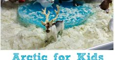 Arctic for Kids is a Winter Sensory Play idea that is fun year round. All you need is a bag of potato flakes, chunk of ice and some arctic animals. #arctic #arcticanimals #sensoryplay