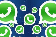 Faz curadoria de conteúdo para grupos do WhatsApp, ganha mais do q vc imagina - Blue Bus