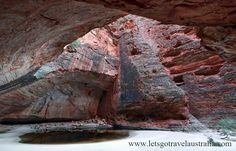 – Up again at for the walk to Cathedral Gorge. It was amazing and one of our favourite places at the Bungles. Places To See, Cathedral, Road Trip, National Parks, Hiking, Australia, Outdoor, Walks, Outdoors