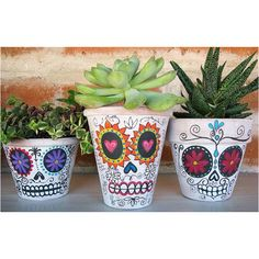 Day of the dead succulents