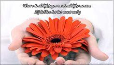 #TotSlot Het is vandaag #DoeVriendelijkDag Maak er wat leuks van!!! Jullie zijn mijn beste #volgers xx Gr @Rili2013