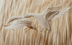 Ducks ~ Paper sculptures by Calvin Nicholls