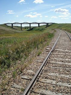 Old bridge near Scotsguard, SK. Bridges, Railroad Tracks, Places To See, Explore, Train Tracks, Exploring