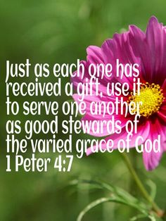 Be good stewards of the gifts God gives us.