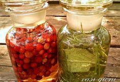 Lavanda - Tăiere, Înmulțire - magazinul de acasă Salvia, Health, Ethnic Recipes, Urban, Canning, Health Care, Sage, Salud