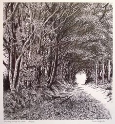 Sarah Woolfenden - the way through the woods