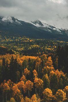 autumn, beautiful, fall, mountains, nature, october, trees, yellow