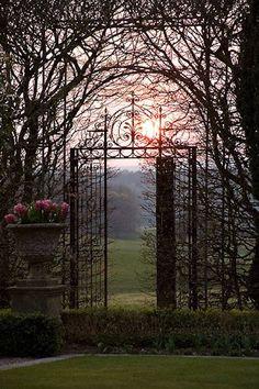 a garden diary: Clive Nichols Garden Photography