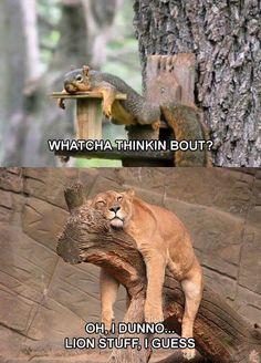 haha this is so cute !