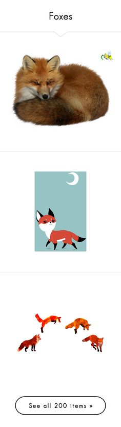 """""""Foxes"""" by stockmon ❤ liked on Polyvore featuring fox, foxes, animals, animaux, art, home, home decor, wall art, fox wall art and moon wall art"""