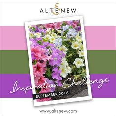 Altenew September inspiration challenge ( video) – Maryam's craft ( make it, love it ) Happy October, September, Challenge Images, Watercolor Pans, Card Tags, Cards, Spring Shower, 30 Gifts, Peonies Bouquet