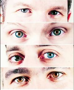 Fall out boy eyes... Wow    Top to bottom   Patrick  Andy Joe Pete