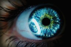 The iris is not only unique by its color but also be the achromatic pattern complexity and textural variability. it's so shiny and perfect Pretty Eyes, Cool Eyes, Lovely Eyes, Blue Green Eyes, Ocean Blue Eyes, Amazing Gifs, Crazy Eyes, Look Into My Eyes, Green Eyes